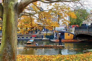 Cambridge for Shopping or Sightseeing