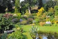 Beth Chatto & Green Island Gardens