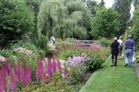 Gooderstone Water Gardens & MNR